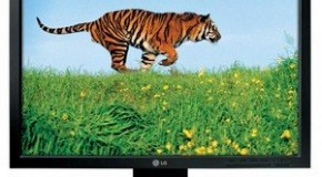 Best 5 Computer Monitors from LG